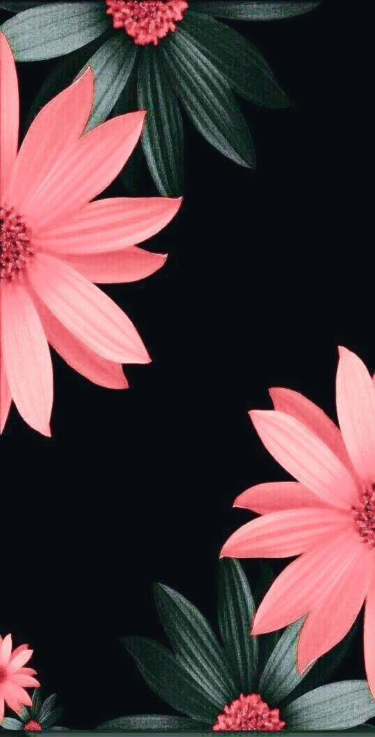 Floral wallpaper Phone lock screen wallpaper, Pink
