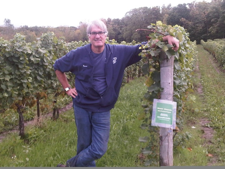 """Thomas Bachelder's """"Three Terroirs"""" project has him making wine in all three of the wine regions that he loves - Niagara, Oregon and Burgundy - all at the same time."""