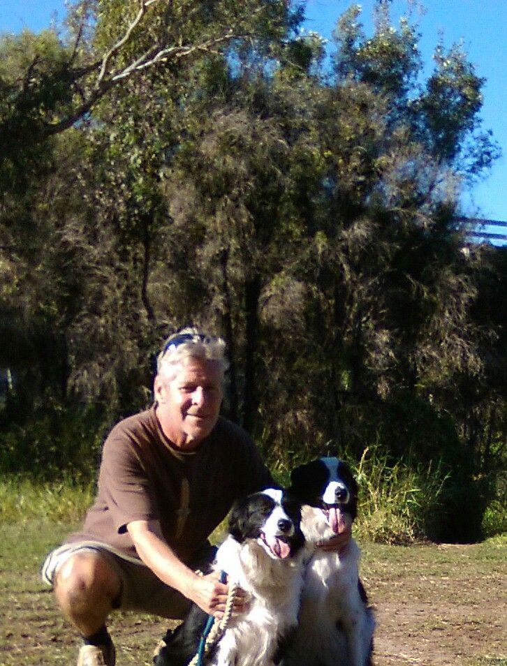 PAMMY/PADDY........THIS IS BORDER-COLLIE HEAVEN! dogsbigdayout.com.au
