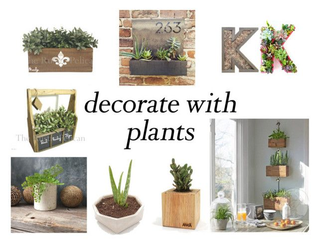"""""""Grow a Little; Planters"""" by gothicvamperstein on Polyvore featuring interior, interiors, interior design, home, home decor, interior decorating, plants and planters"""