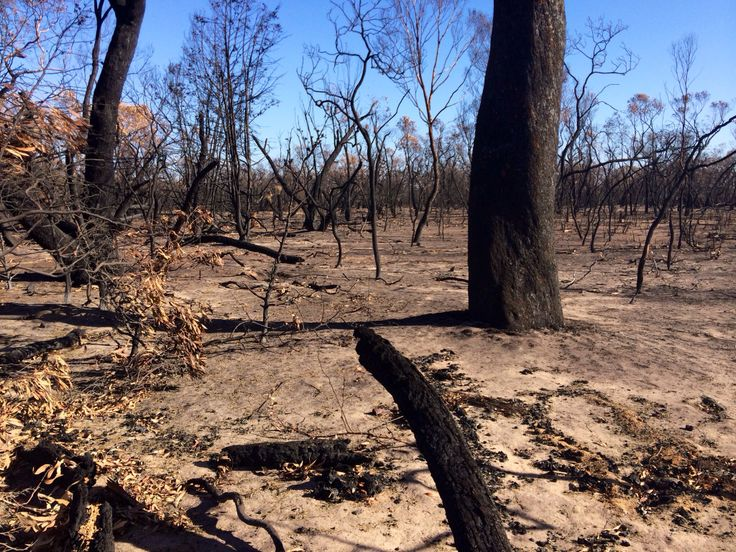 Bush fires at Stawell Victoria 2014