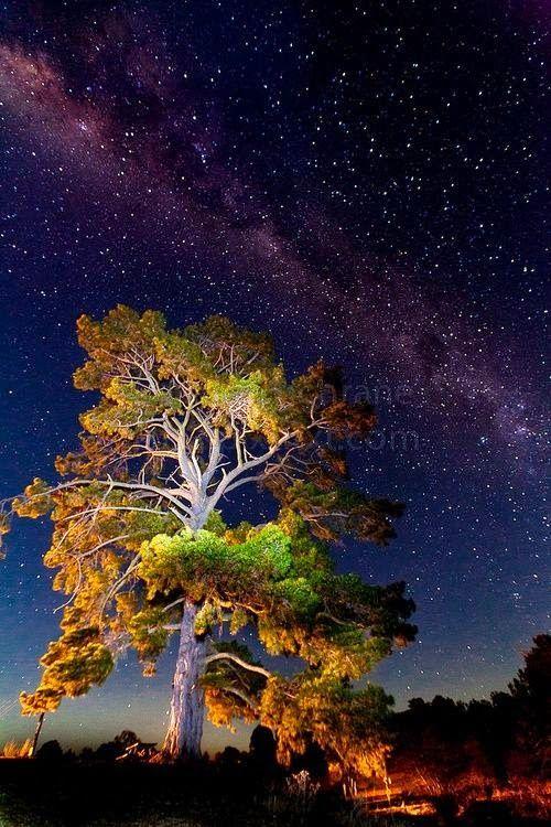 Milky Way, New South Wales - Australia
