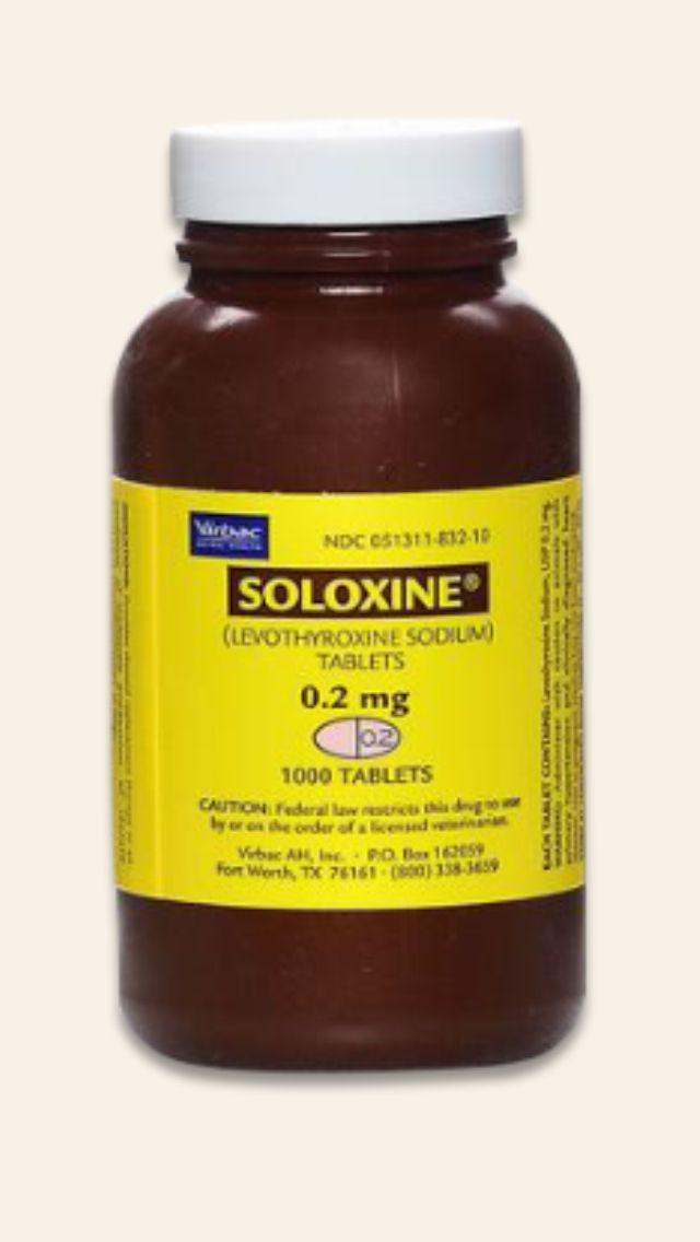 Chlorambucil Dosage Dogs