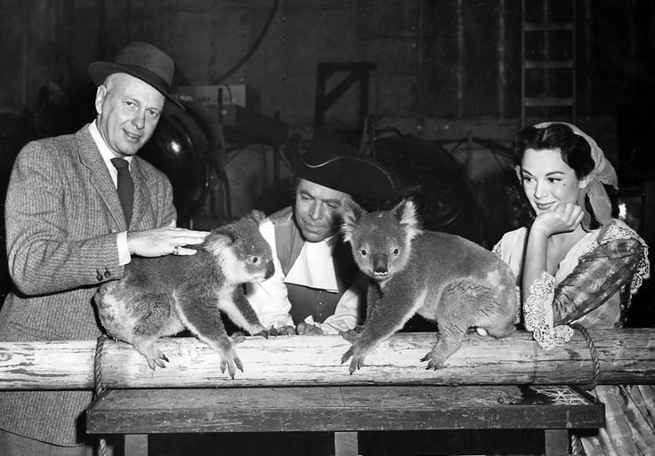 "1952 Four koala arrive from Sydney (on loan to Paramount Studios for their film ""Botany Bay""); later gifted to the Zoo by NSW"