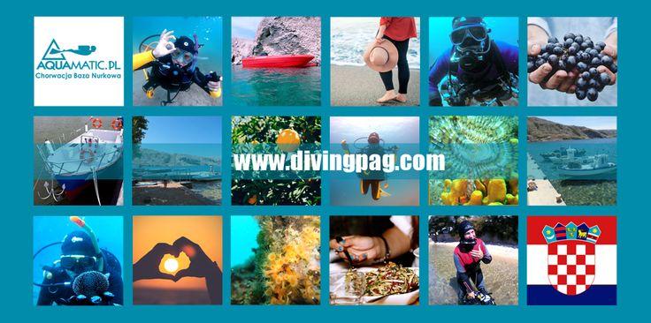 Wakacje w Chorwacji. Dlaczego warto wybrać się na wypoczynek na wyspie Pag? Poczytajcie koniecznie w naszych Aktualnościach :) >> http://www.divingpag.com/…/36-wakacje-w-chorwacji-dlaczego-…  Cały czas mamy dla Was aktualną promocją na 25 czerwca - 2 lipca jak również 27 sierpnia - 3 września! Kto chętny - pisać: nurkowaniechorwacja@gmail.com #aquamatic #croatia #nurkowanie #diving