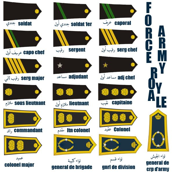 1000+ Images About Military Ranks On Pinterest
