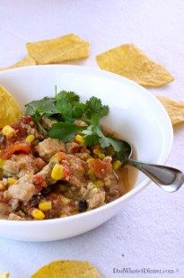 Slow Cooker Mexican Pork Stew |