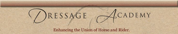 Detailed explination on the different levels and tests of Dressage (with video examples).
