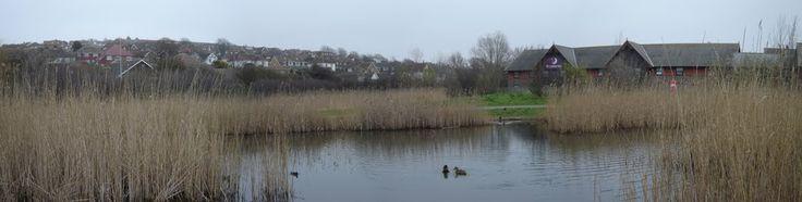 Drove Park, Newhaven  - photo Robert Bovington  http://bovingtonbitsandblogs.blogspot.com.es/ #Sussex #Newhaven