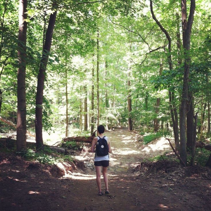 Deer Lick Cave Loop Trail - Brecksville Reservation is a 4 mile loop trail located near Brecksville, Ohio that features a river. The trail is rated as moderate and primarily used for hiking, trail running & walking. Dogs are also able to use this trail but must be kept on leash.