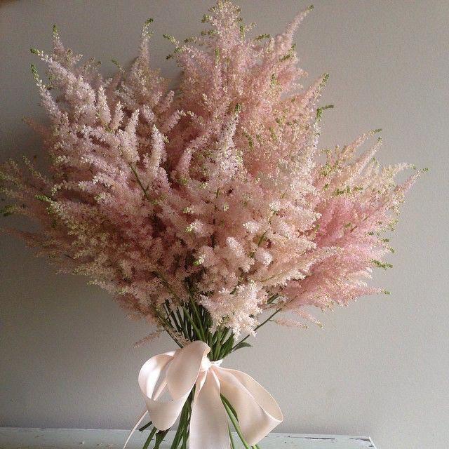 Astilbe Aschajolie Astilbe Bouquet Astilbe Bouquet Dried Flower Bouquet Dried Flowers