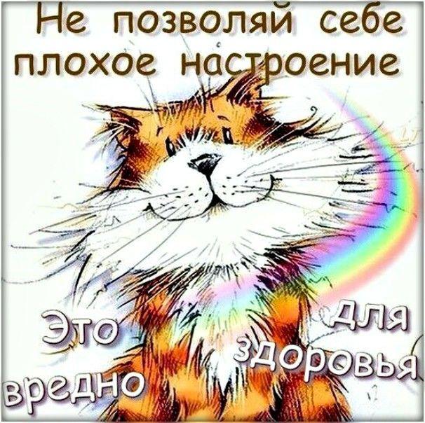 Прикол картинки, открытка проснись в хорошем настроении и не порти настроение другим