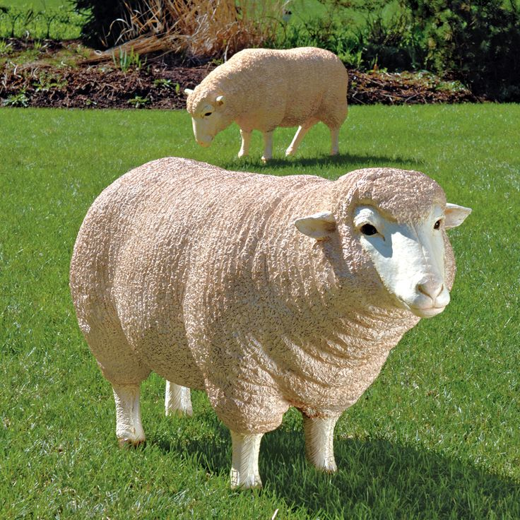 Merino Ewe Life Size Head Up Sheep Statue