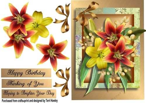 This a great way to brighten someones day, its a a 3D decoupage card front A5 size, and fits any A5 envelope when finished.  It is very easy to make and can be used for many reasons , there are 3 labels, Hoping to brighten your day, thinking of you, and Happy Birthday.enjoy