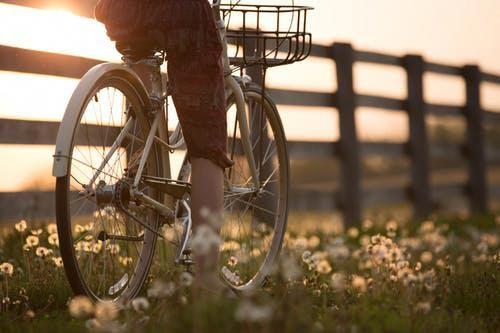 Bikes Make Life Better Bicycles Biking Benefits Bicycle Landscape