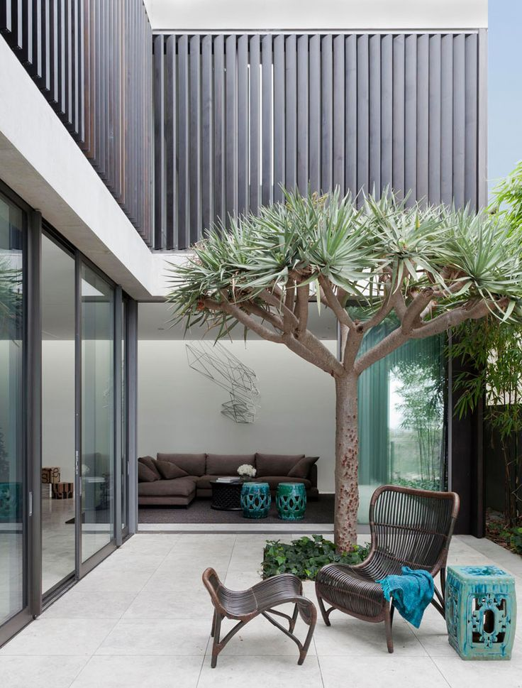 25 best ideas about modern courtyard on pinterest for Courtyard landscaping australia