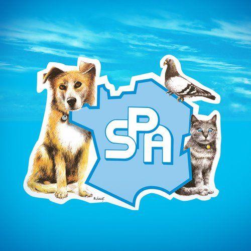 La #SPA vous propose des offres d' #emploi auprès des #animaux sur http://www.spa.asso.fr/recrutement !