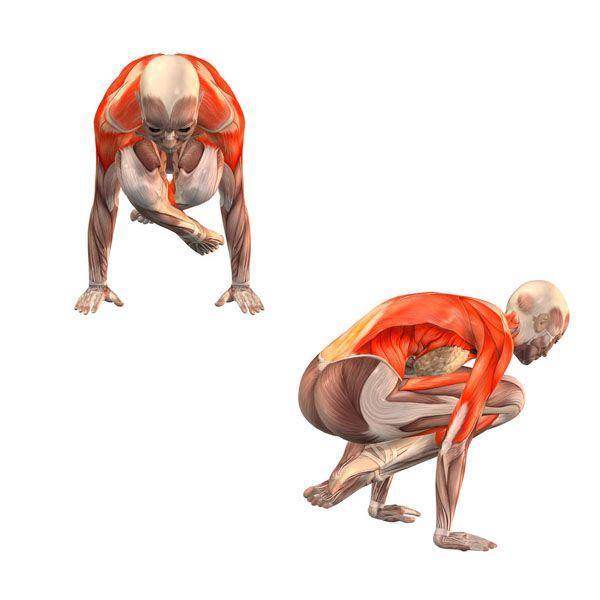ૐ YOGA ૐ Lolasanaૐ Postura del Pendulo. Pendant Pose -  Yoga Poses | YOGA.com