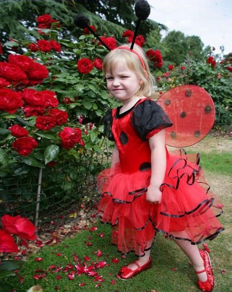 Shop for Travis Designs Ladybird Tutu dress at Totally Fancy. A soft red and black velour spot bodice with a pretty ribbon edged net layered skirt This style includes antennae boppers and cute removable wings