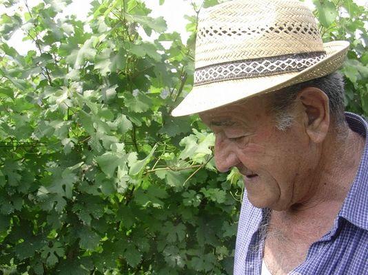 Mio nonno, il dolcetto, la Merica