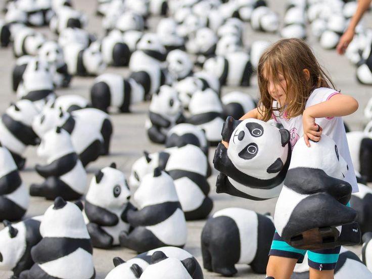 Maandag 5 augustus: Een meisje speelt met pandaberen gemaakt van papier marche in Berlijn, Duitsland. De ruim 1600 pandaberen zijn neergezet door het Wereld Natuur Fonds om mensen te laten zien hoeveel van deze dieren er nog in het wild leven.
