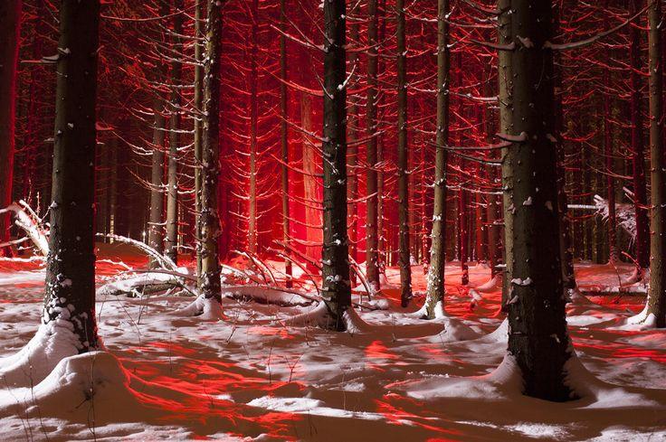 photography-blog | LED wood