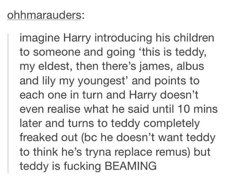 """I bet James II is like """"man f u too"""" -> I don't think so. He probably sees Teddy as a big brother and therefore Harry ' s eldest kid."""