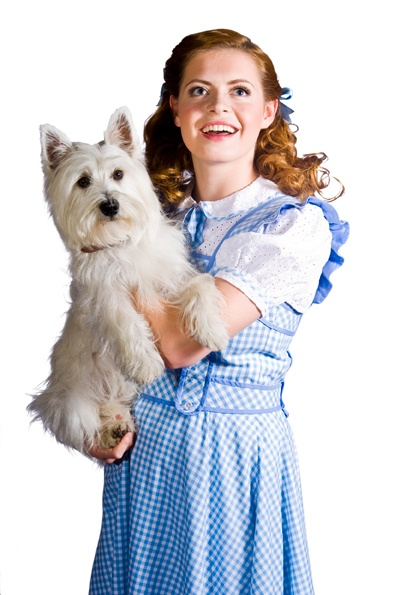 Sophie Evans – Dorothy of the Wizard of Oz is the new Rising Star!
