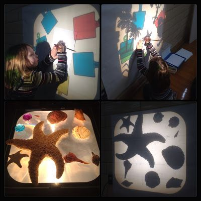 Inquiring Minds: Mrs. Myers' Kindergarten: Force and Motion Inquiry- The Investigation- Science Fair- Lights and Shadows