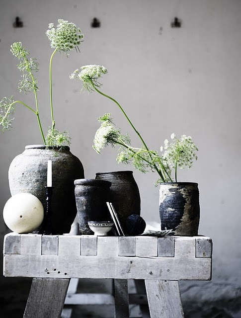 Love the simple look of Queen Anne's lace in containers on a bench. #queenannelace