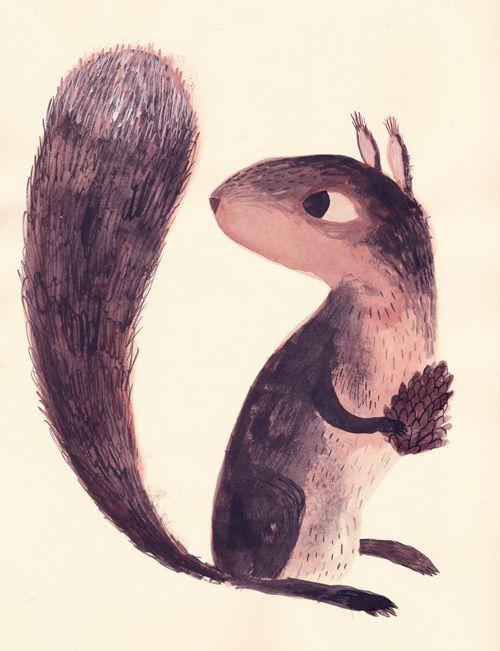 Super cute quirrel by Chuck Groenink. #illustration #squirrel #characterdesign