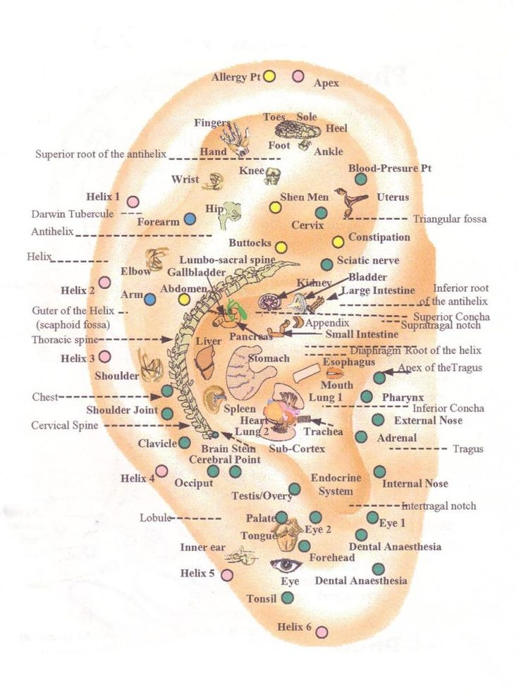 Chinese auriculotherapy with ear seeds & ear stapling