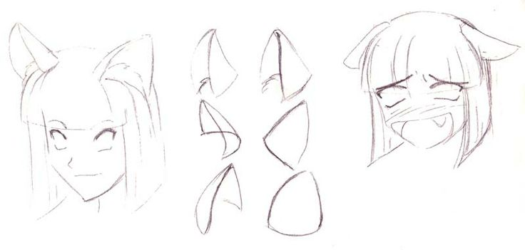 Neko Ears And Different Positions Implying Emotion | Drawing Manga Style | Pinterest | Ears