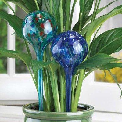 Идея для подарка: Автополив для комнатных растений  Штука в виде стеклянной колбы с водой. Когда земля начинает засыхать, из почвы в колбу выходит кислород, который в свою очередь выпускает такое количество воды, которое необходимо растению. Одного такого шара хватает на 7 дней полива.  #подарок #девушка #цветы #дом #декор #интерьер #квартира #холостяк #мама