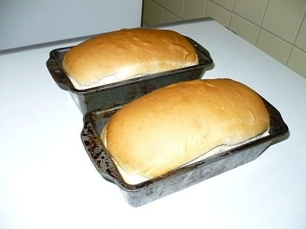 Make a delicious tasting old fashioned bread recipe; salt rising bread has a dense texture and great flavor but an odor of sour dough.