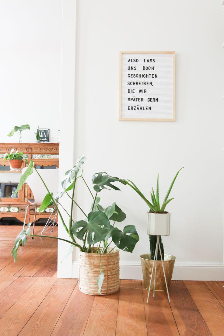 die besten 25 indoor office plants ideen auf pinterest. Black Bedroom Furniture Sets. Home Design Ideas