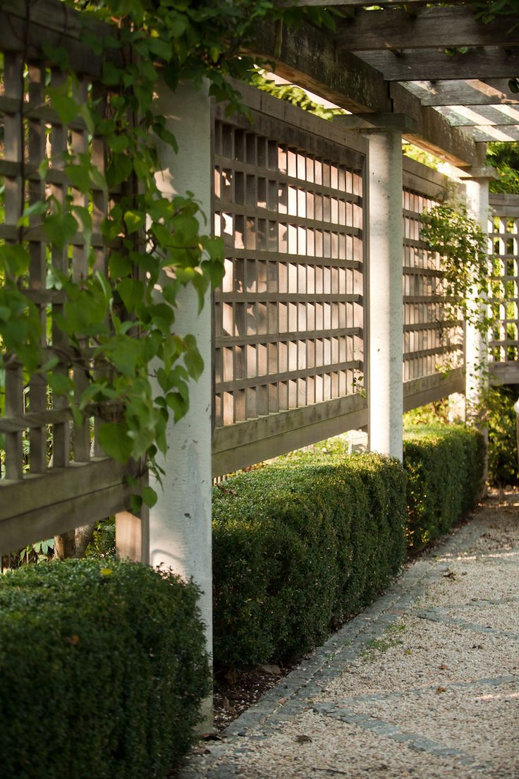 "On the side of a wood pergola, landscape architect Janice Parker installed a lattice trellis to help vines and climbers grow. ""The combination [of pergola and trellis] provides the ideal support structure for growing perennials for additional privacy and shade,"