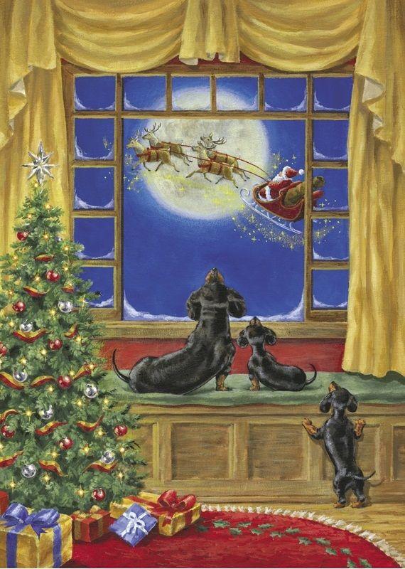 Dachshund Christmas.