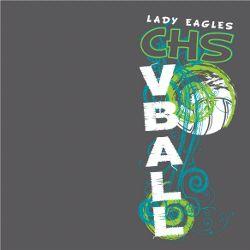 Volleyball Design VB855
