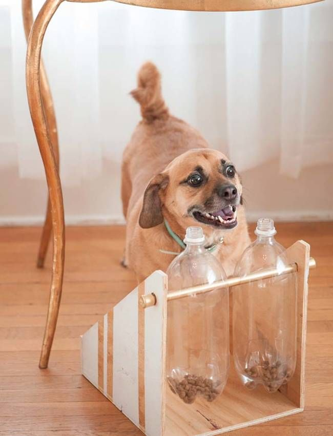 """15.) A recycled <a href=""""http://www.dailydogtag.com/diy/diy-treatfood-dispenser-paw2014/"""" target=""""_blank"""">dog treat dispenser</a> will keep your pet entertained and happy."""