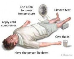 Summertime - Effects of Heat Stress and Humidity- Summer Safety Information