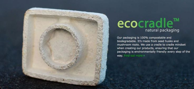 Ecovative biodegradable plant-based packaging