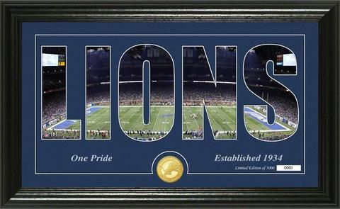 NFL Detroit Lions Silhouette Panoramic Bronze Coin Photo Mint