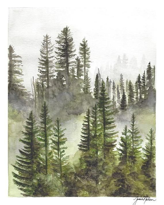 Evergreen Tree Watercolor Forest Watercolor Foggy Forest