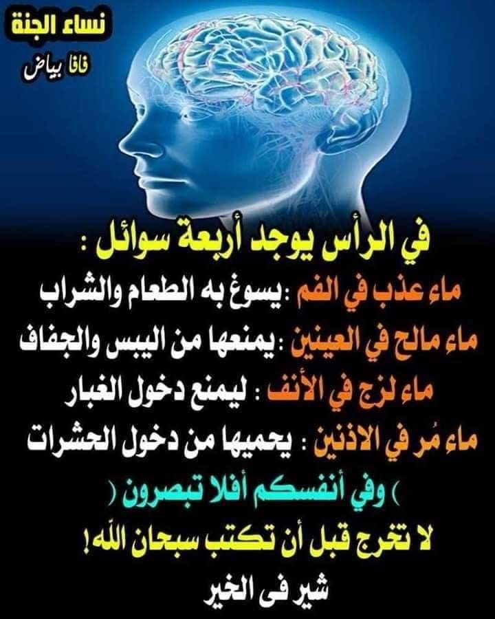 Pin By The Noble Quran On I Love Allah Quran Islam The Prophet Miracles Hadith Heaven Prophets Faith Prayer Dua حكم وعبر احاديث الله اسلام قرآن دعاء Movie Posters Quotes Movies