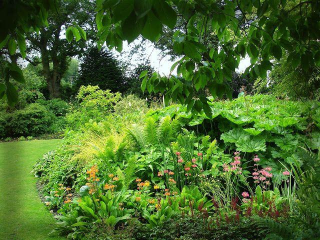 Pomysły z ogrodu Beth Chatto. Sielski Dom i Ogrod