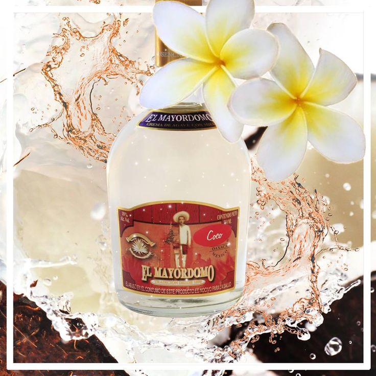 #Licor de #Agave con Miel sabor #Coco #Coconut #Mayordomo #ElMayordomo #AusencioLeon #Mezcal
