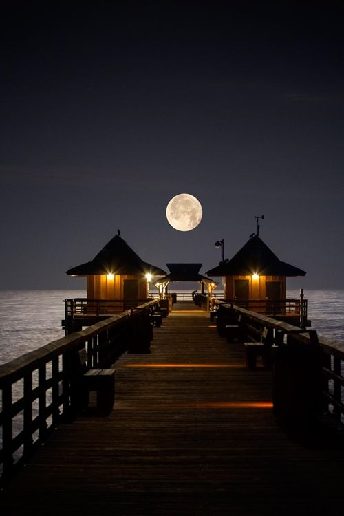 Naples Pier Naples, Florida