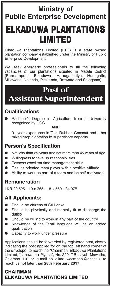 Sri Lankan Government Job Vacancies at Elkaduwa Plantations Limited for Assistant Superintendent