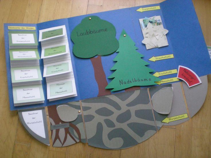 Pin von Babette Foroughi auf Schule | Teaching und School